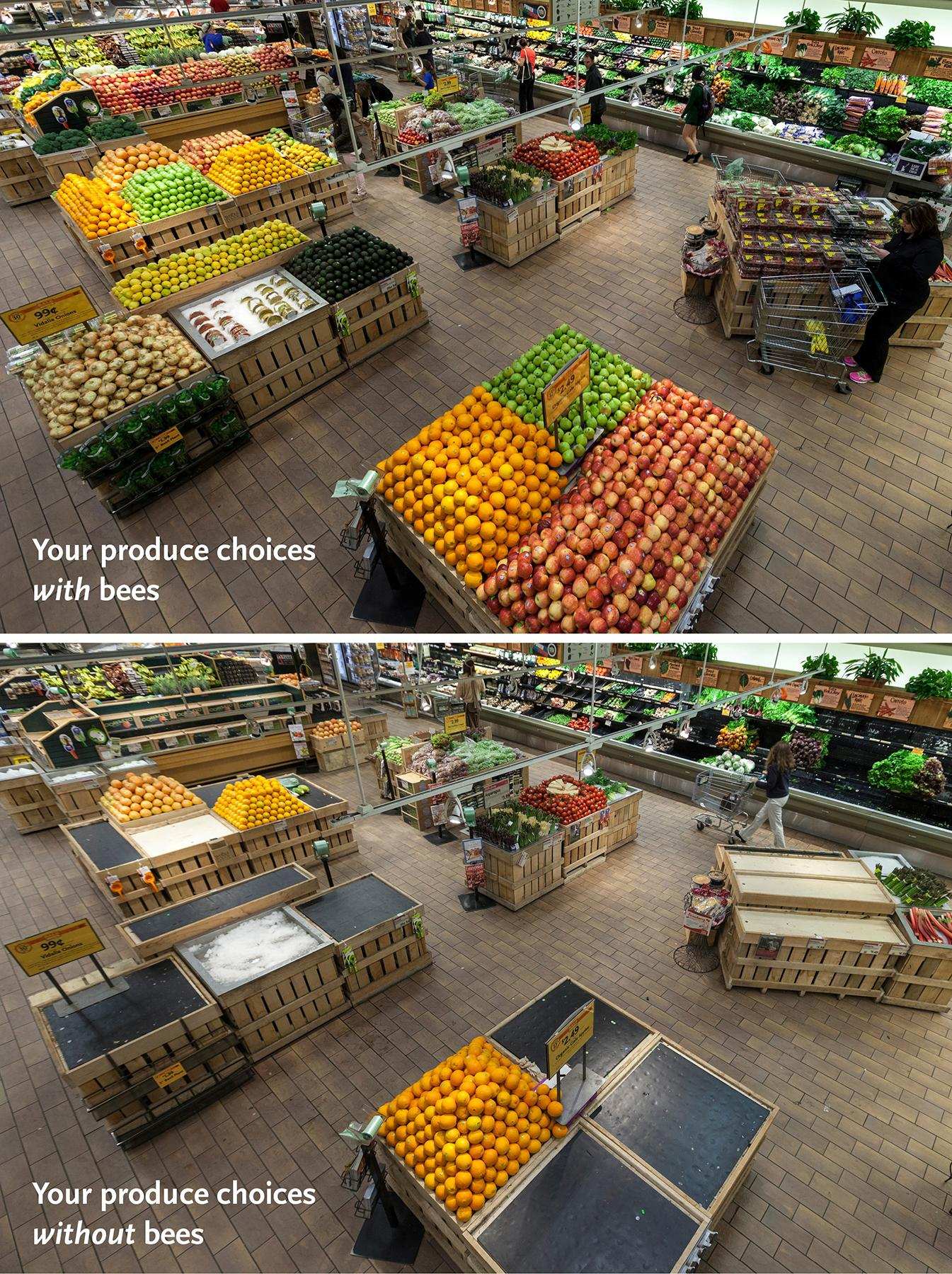 Whole Foods grocery store without bees